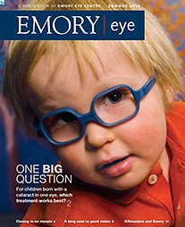 Emory Eye Summer 2010